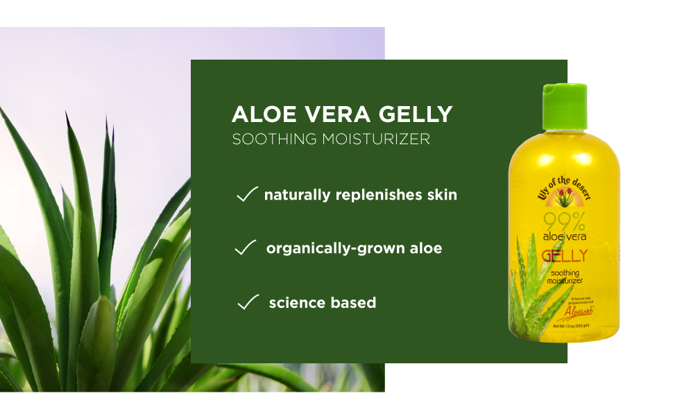 aloe vera moisture cooling soothing dryness acne redness aging