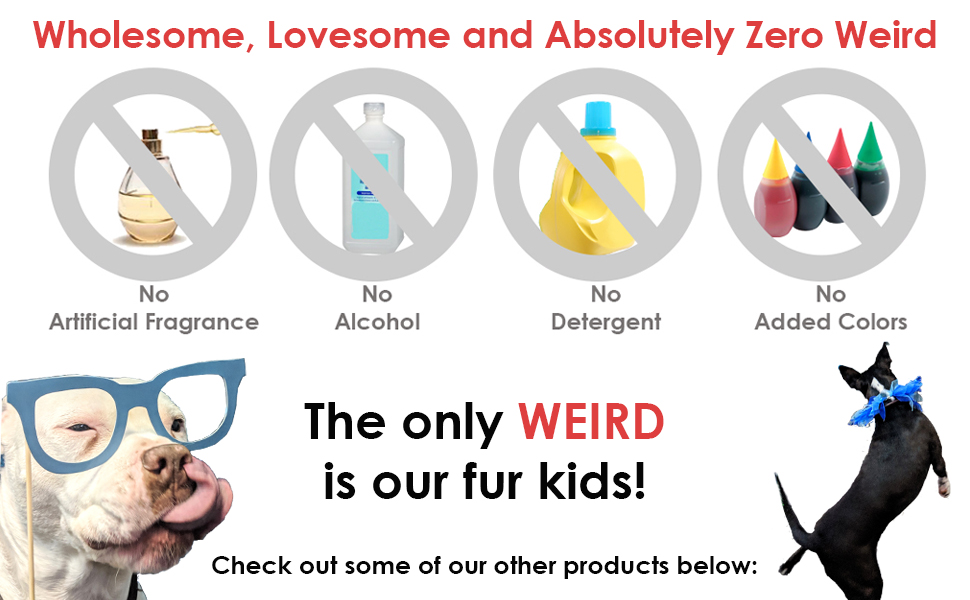wholesome lovesome and absolutely zero weird fur kids american bully boston terrier mix mutt