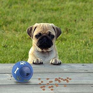 Dog Puzzle Feeder Toy