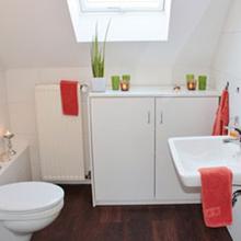 Sanitizes Bathrooms