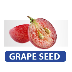 grape seed pills