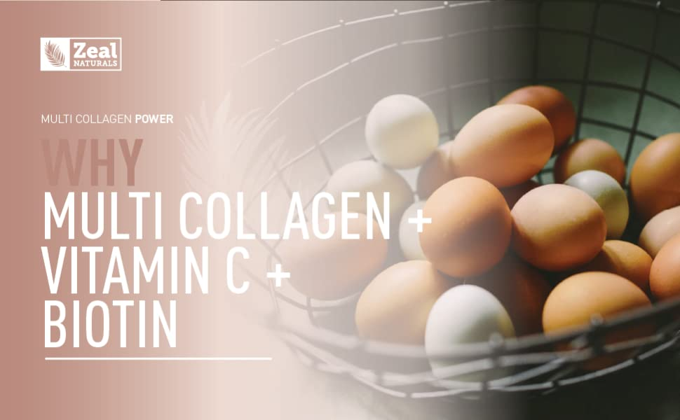 multi collagen vitamin c biotin supplement egg shell membrane hyaluronic acid collagen
