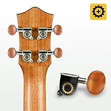 ukulele for beginner