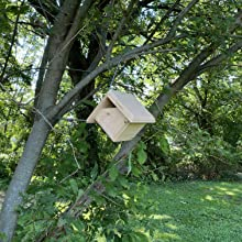 Designed to swing in the wind while it hangs. Some birds prefer living in a house that gently sways