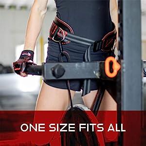 Dark Iron Fitness Dip Belt