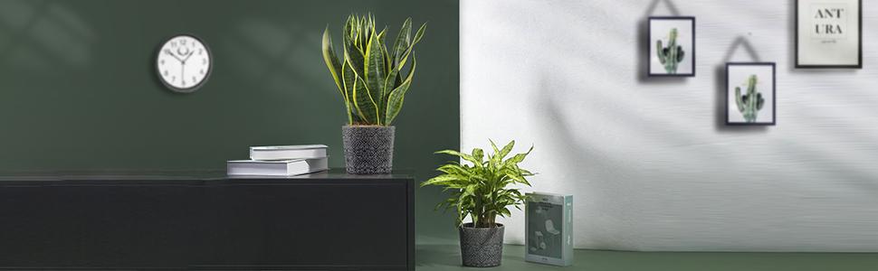 indoor/outdoor pot