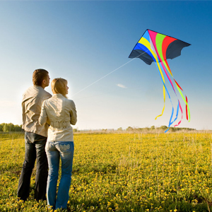 kites for adults