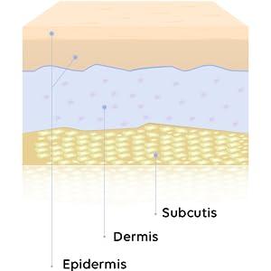 SKIN LAYERS DERMIS EPIDERMIS MULTI-DEPTH CELLULAR REJUVENATION