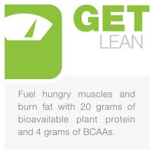 best plant protein powder to lose weight