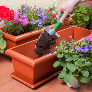 How to use potting mix
