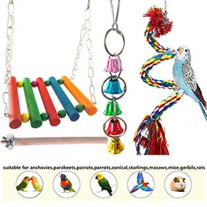 Bird Cage Toy