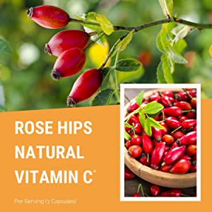 rose hips vitamin c 1000mg vitamins supplement bulk zinc immune support booster boost natural keto