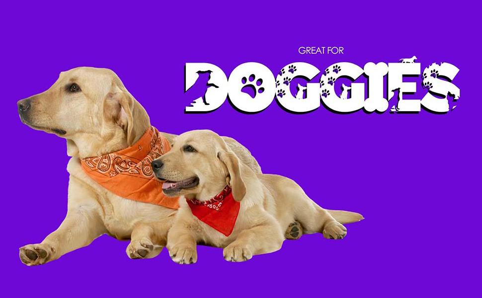 Dog Bandana, cowboy bandana, bandana design, bandanas for sale, head bandanas, mens bandana, scarf