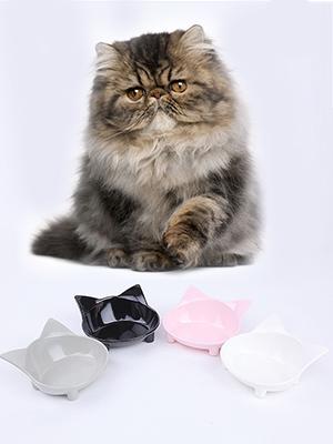 raised cat food bowl pet bowl cat food dish cat food and water bowl set car food tray dog placemat