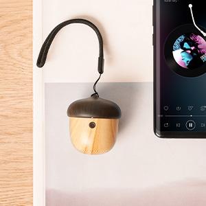 mini nut speaker