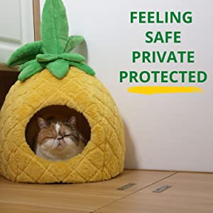 petnpurr pineapple dog bed