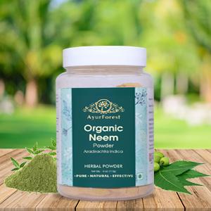 Organic Neem Powder Neem Powder Organic Blood Purifier USDA certified Neem Powder Neem For Skin Care