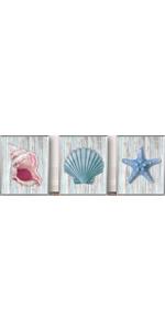 "Shells and Starfish Beach heme Seashell Art Painting Set of 3 (8""X10"" No Frame"