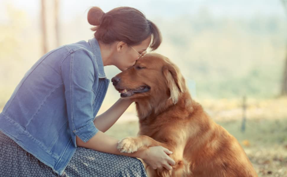 Dog owner kissing dog head