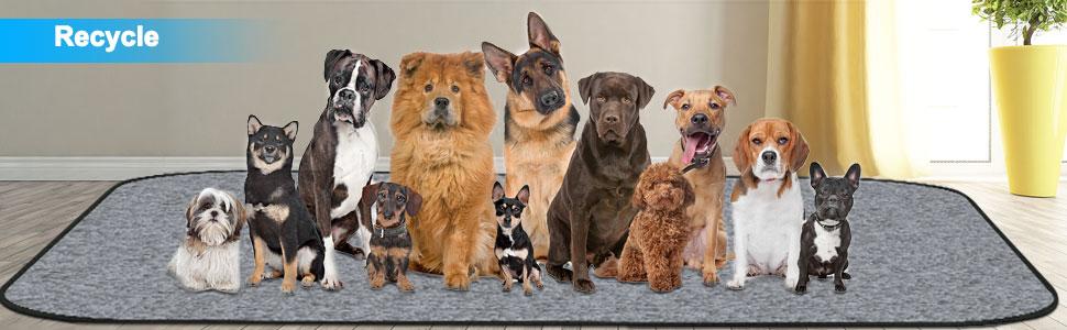 Pet training mat