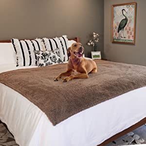 rocket and rex waterproof pet blankets provide leak proof protection for your furniture and car