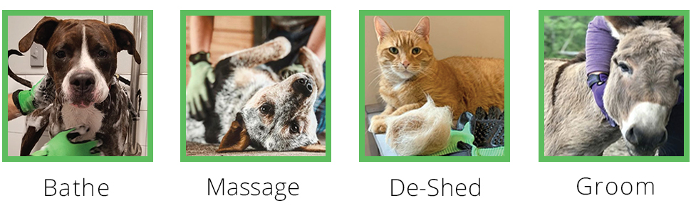 works perfect for bathing, massaging, de-shedding and grooming