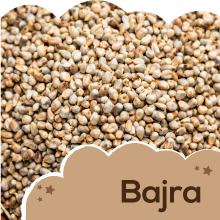 Bajra (Pearl Millet):