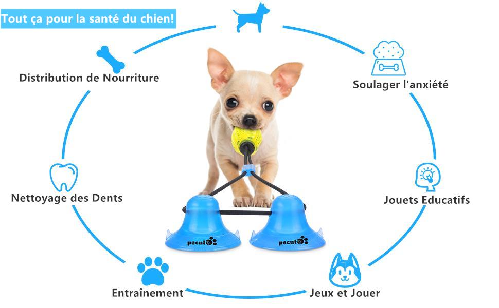 jouet pour chien interactif