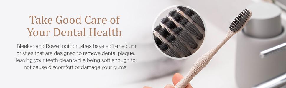 toothbrush bleeker and rowe minimalist zero waste