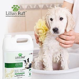 dog shampoo, dog shampoo with aloe, dog shampoo with lavender