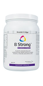 b strong b vitamins dogs cats