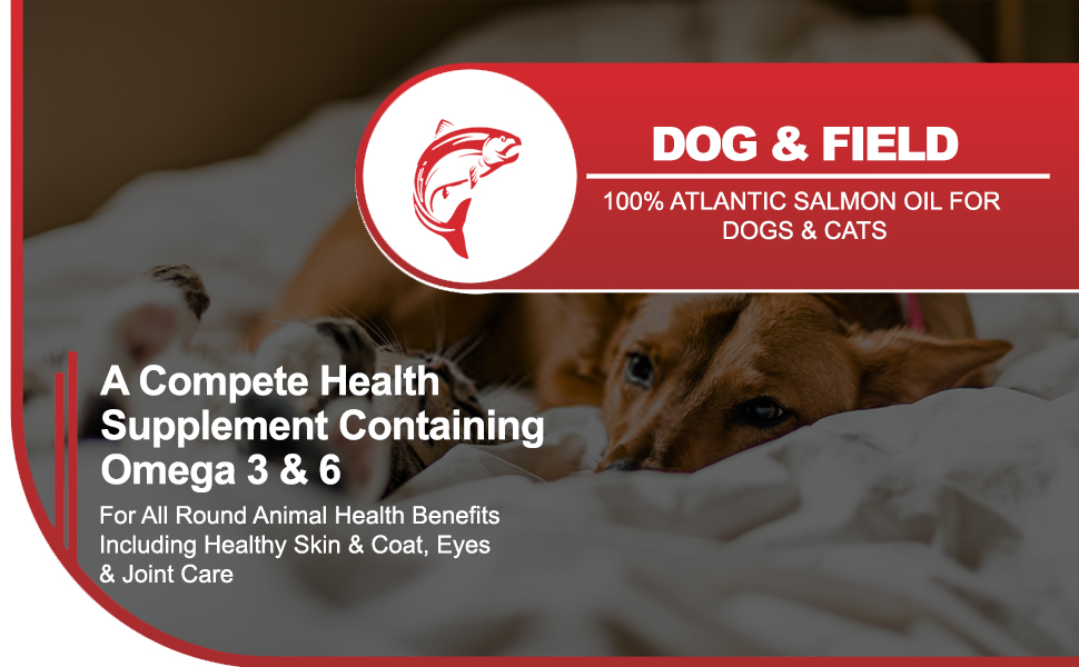 100% Atlantic Salmon Oil for Dogs & Cats