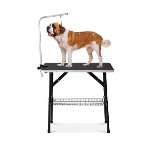 cat grooming table