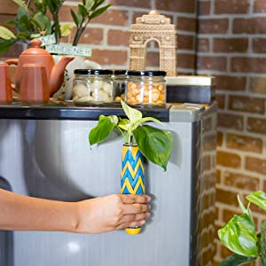lazygardener, magnetic hydroponic planter, plant pots, planters