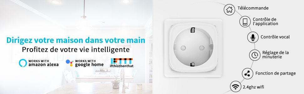 ANOOPSYCHE Prise Intelligente Compatible avec  Alexa Google Home IFTTT Prise Connect/ée Wifi 16A-3680W Aucun Hub Requis Prise Interrupteur programmable T/él/écommande App Lot de 2