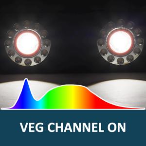 bigg2000 grow light veg channel on