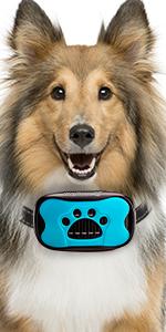 bark collar,anti bark collar,barking collar,dog bark collar, dog barking collar