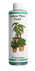 liquid indoor house plant fertilizer food for all types of plants promote green foliage strong roots