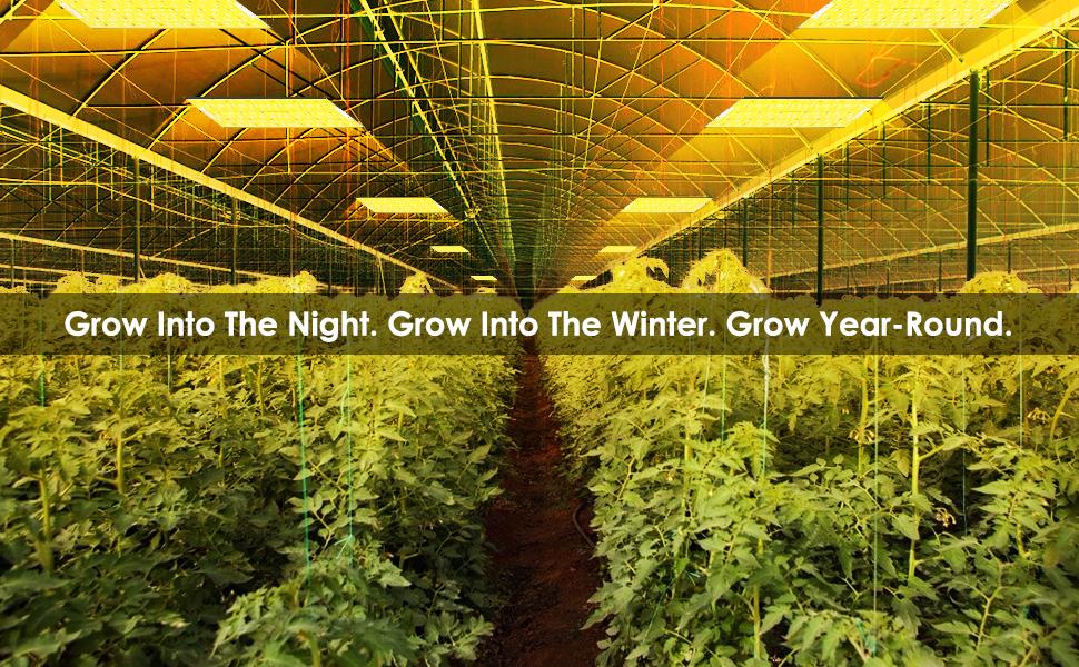 P4000 4000w led grow light