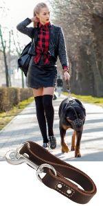 Short Dog Leash