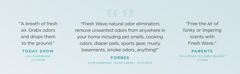 Fresh Wave natural air freshener