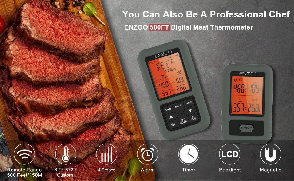 meat thermometer 1