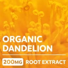 Organic dandelion root extract - 200mg