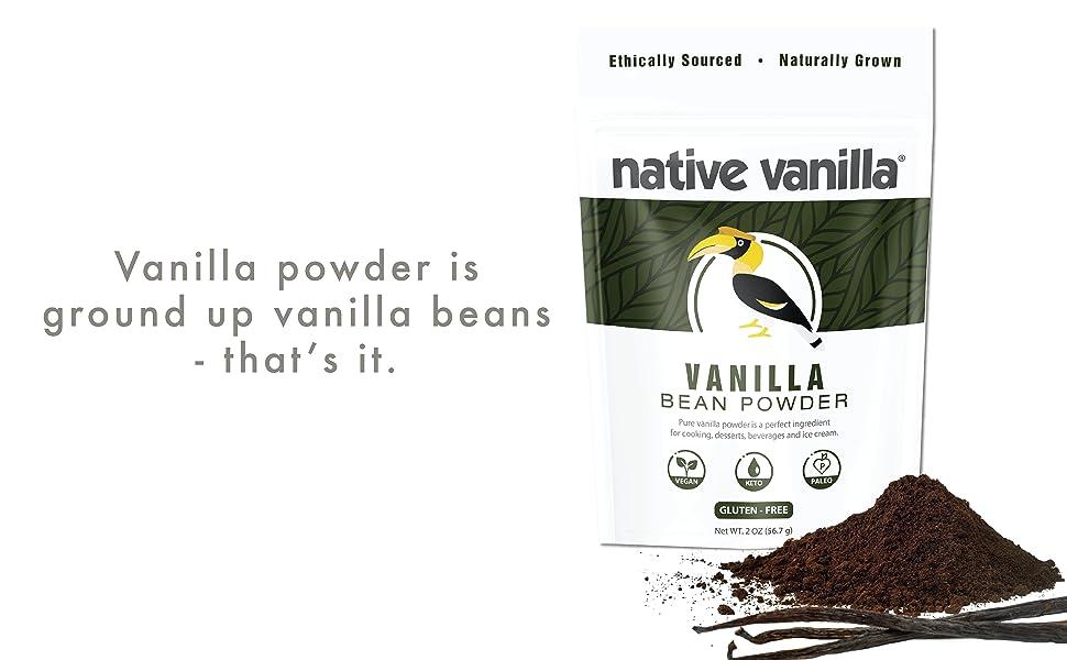 vanilla, vanilla bean powder, vanilla bean, bean, pod, powder
