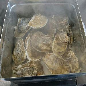 牡蠣かんかん焼き