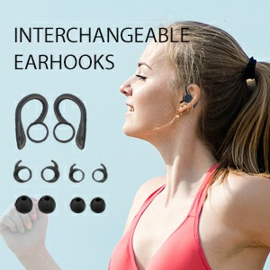 Interchangeable Earhooks