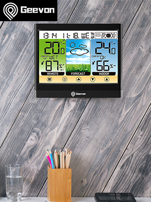 208667 weather station