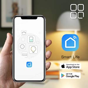 Work With Smart Life App