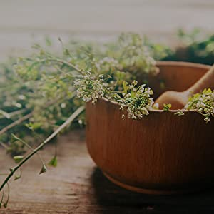 herbs, extracts
