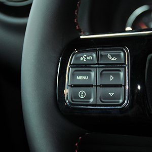 Support Steering Wheel Control